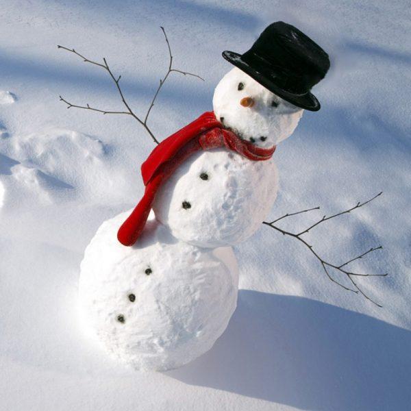 Snowmankit2.jpg