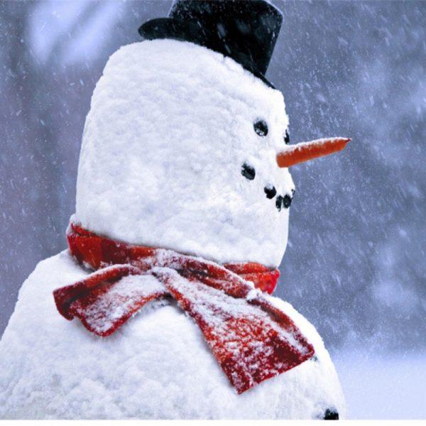 Snowmankit6.jpg