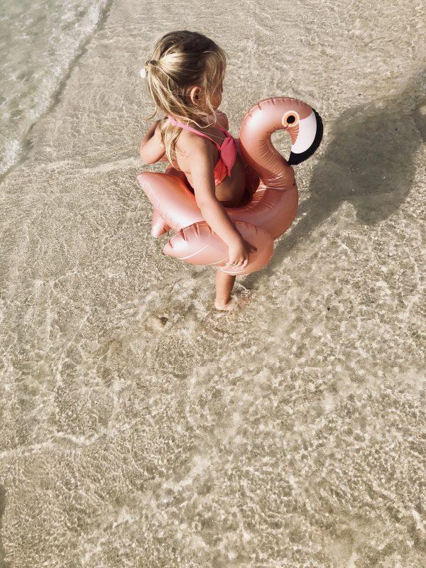 Flamingo-Schwimmreifen-Meer