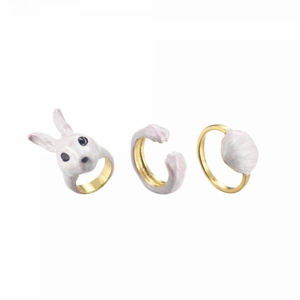 Ring_set_bunny